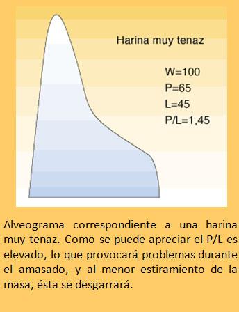 Defectos-de-la-harina-de-trigo1