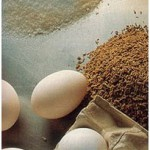 El-huevo-y-su-uso