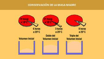 Elaboracion-del-pan-con-levadura-natural3